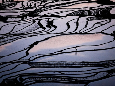 farmer-rice-terraces-china_46133_990x742
