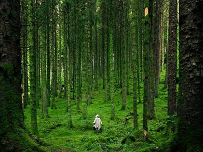 hiker-scottish-highlands_45675_990x742