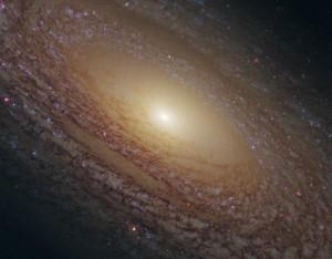 galaxia NGC 2841