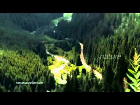 Explore The Carpathian… cyanide