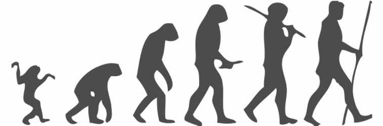 Human-Evolution-Scheme