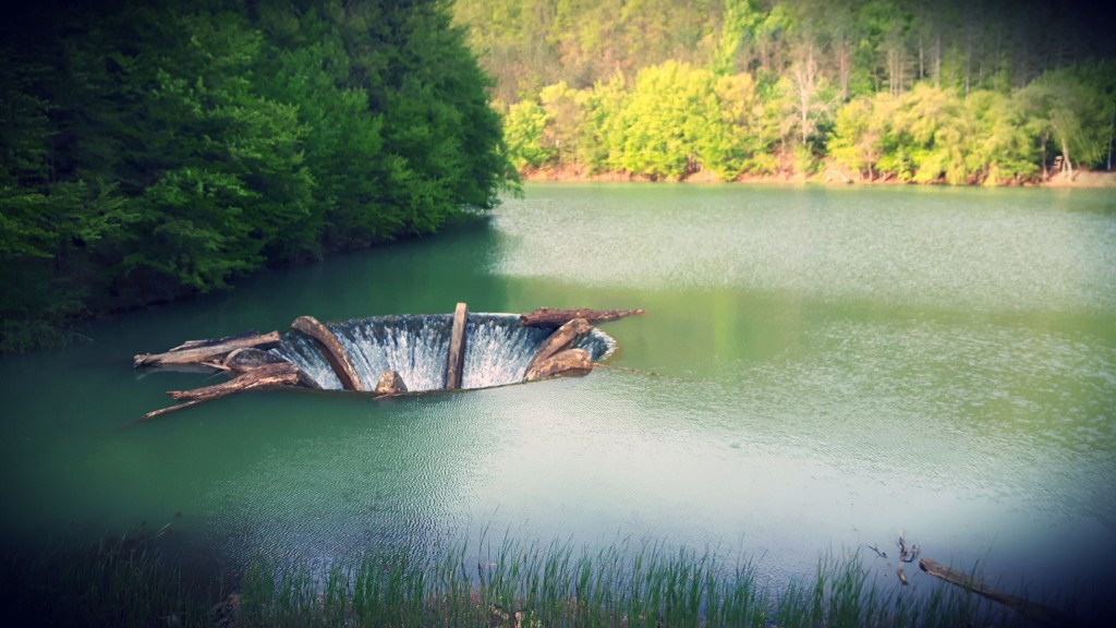 Lacul Vida, sat Luncasprie - Dobreşti, Bihor Foto: Ovi D. Pop