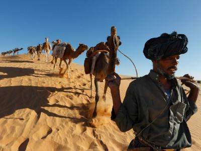 caravanner-camels-stirton_47908_990x742